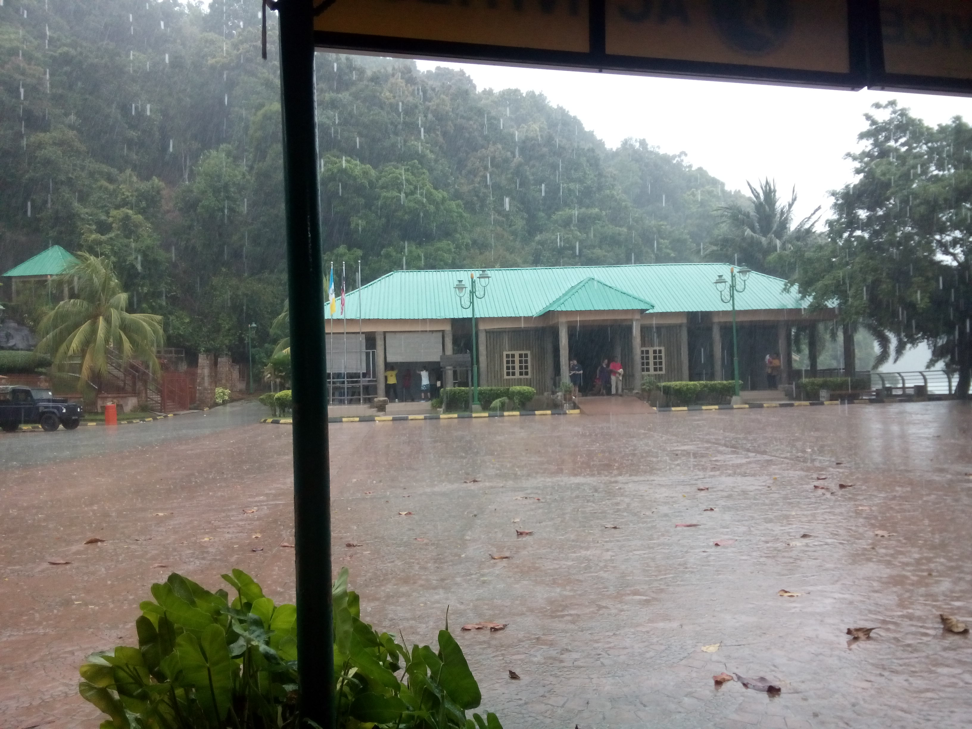 Heavy rain with buildings and trees