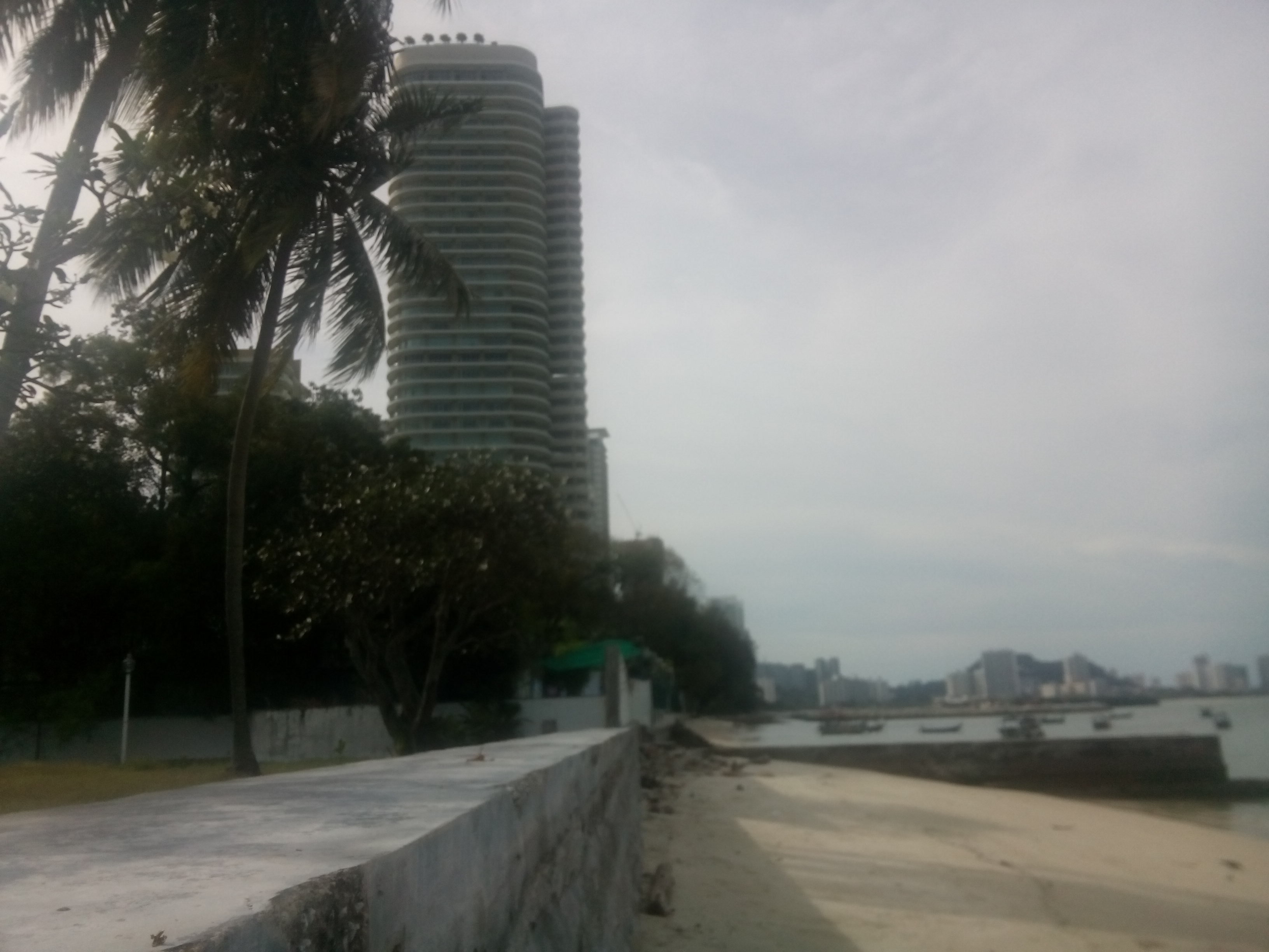 A sandy beach with palm tree in the foreground and tall building in the distance