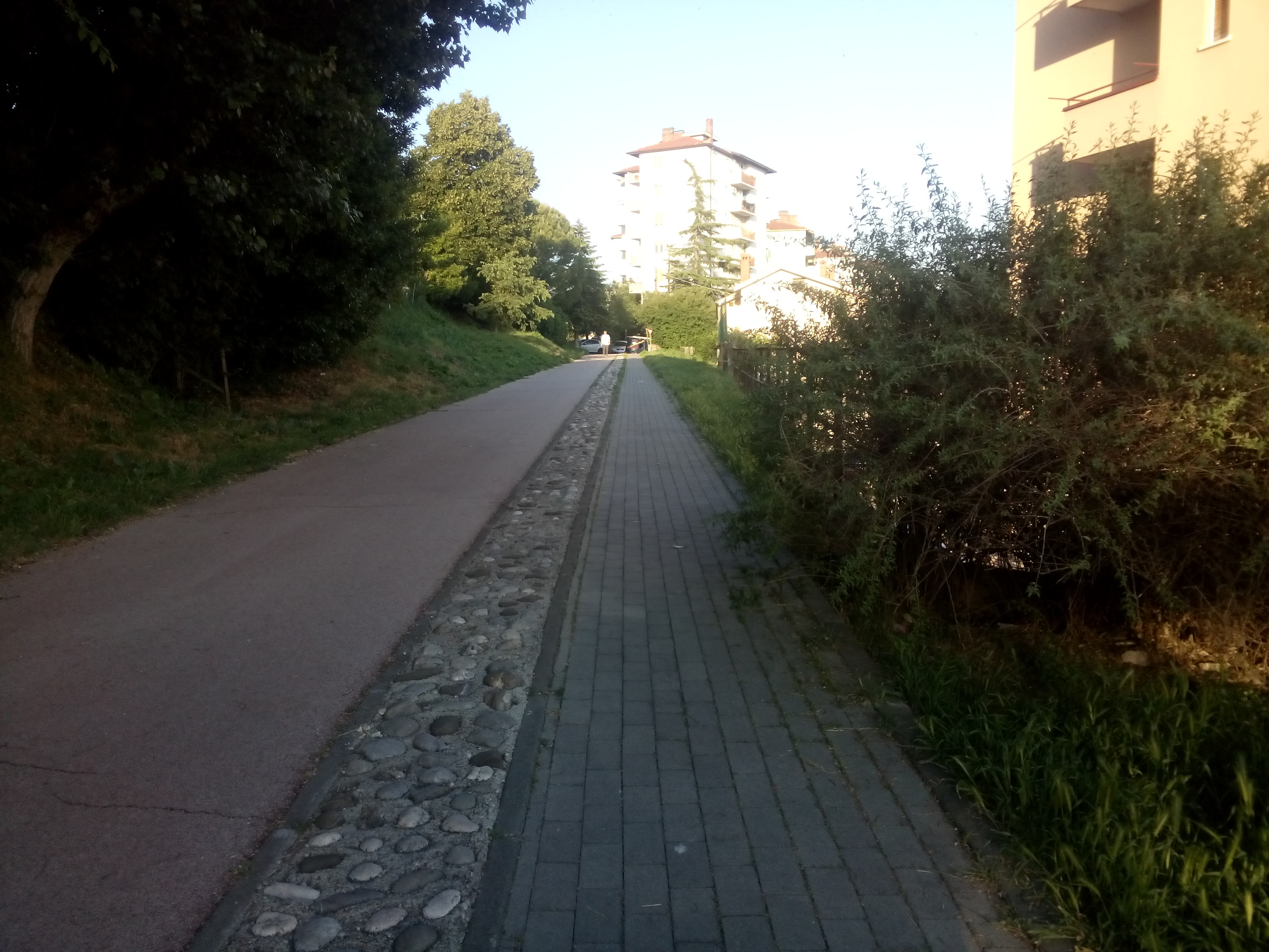A cyclepath with trees each side and buildings in the distance