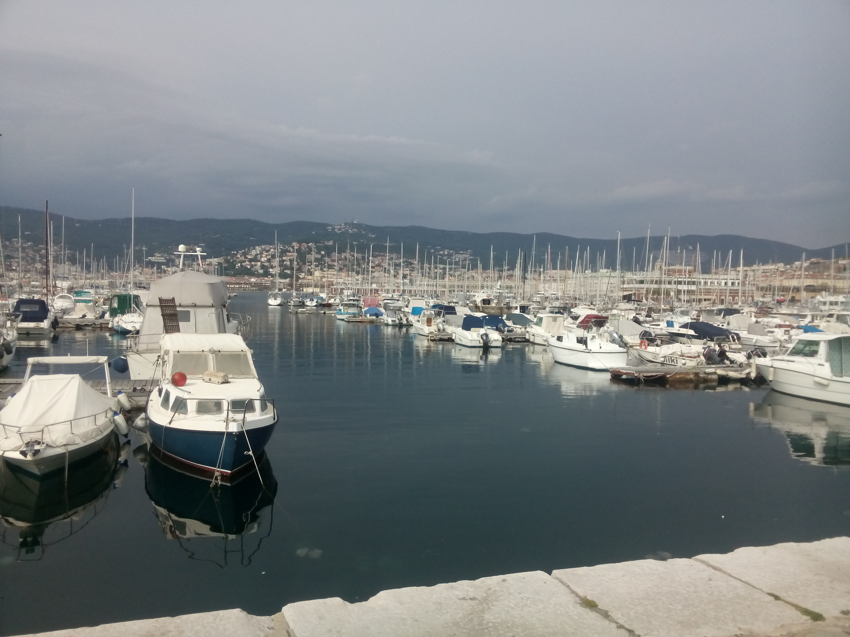 Many small white boats in a harbour with Trieste in the background