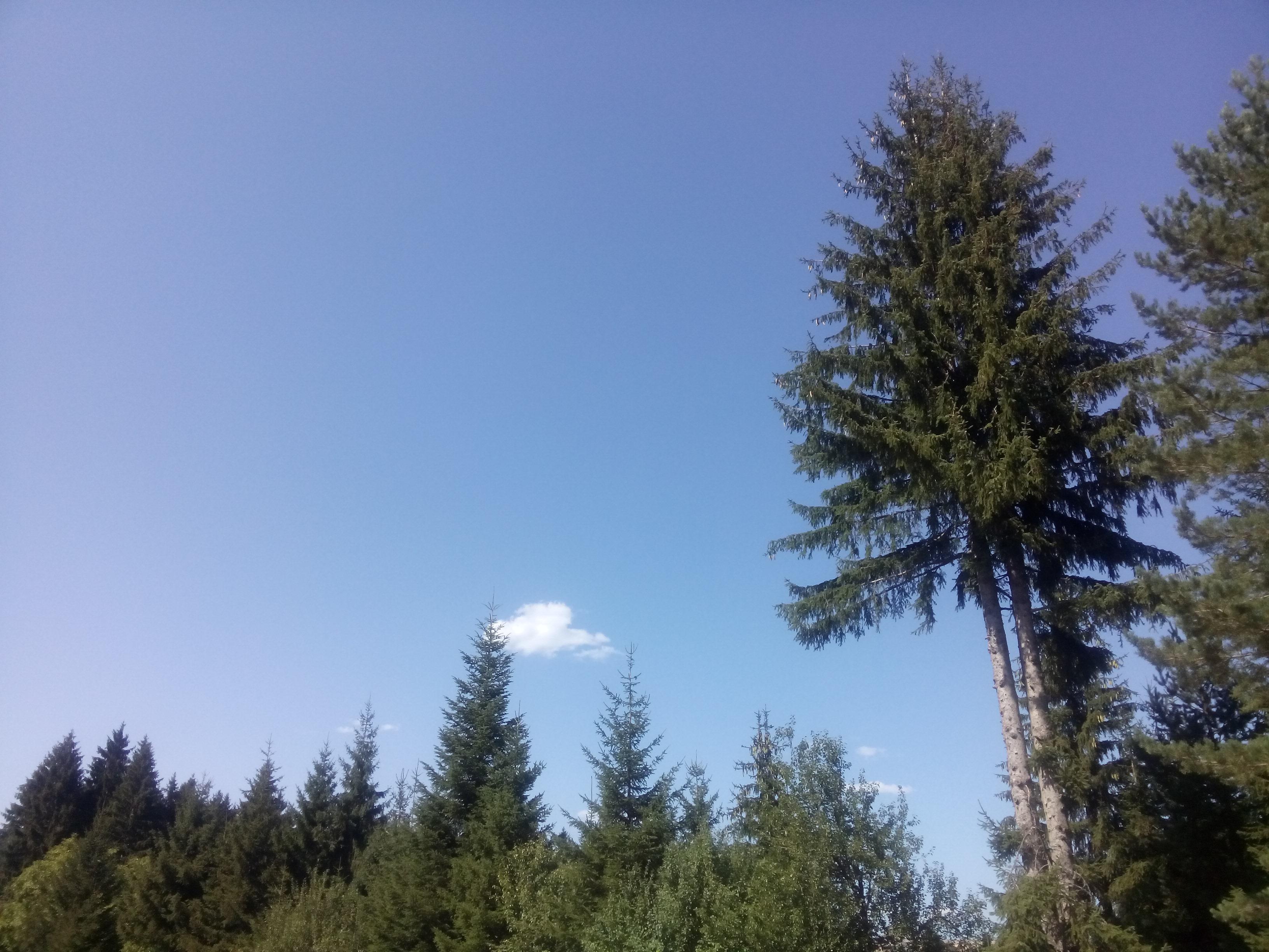 https://i.amy.gy/2017-sarajevo/IMG_20170826_144940.jpg