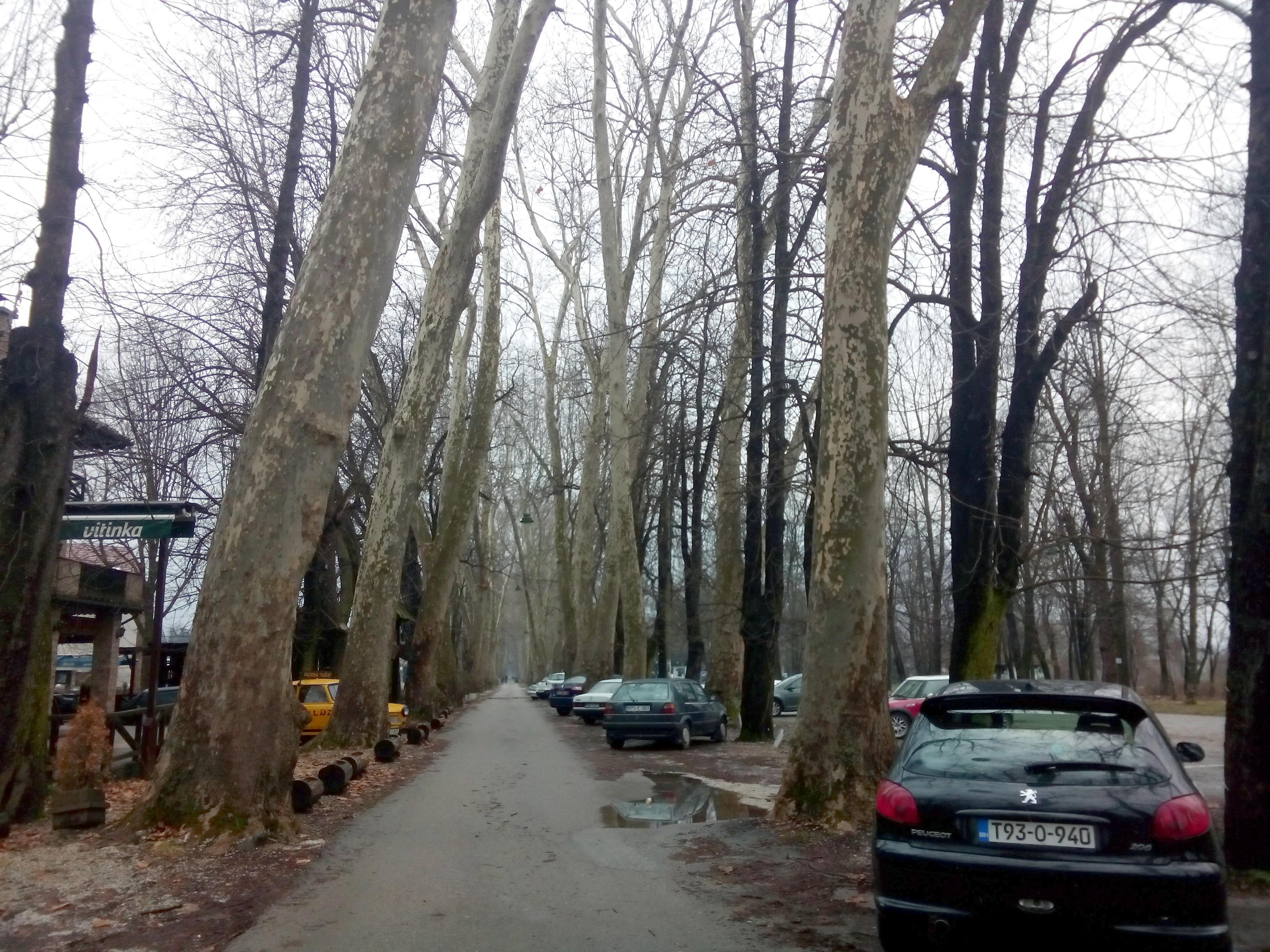 https://i.amy.gy/2017-sarajevo/IMG_20180204_140833.jpg