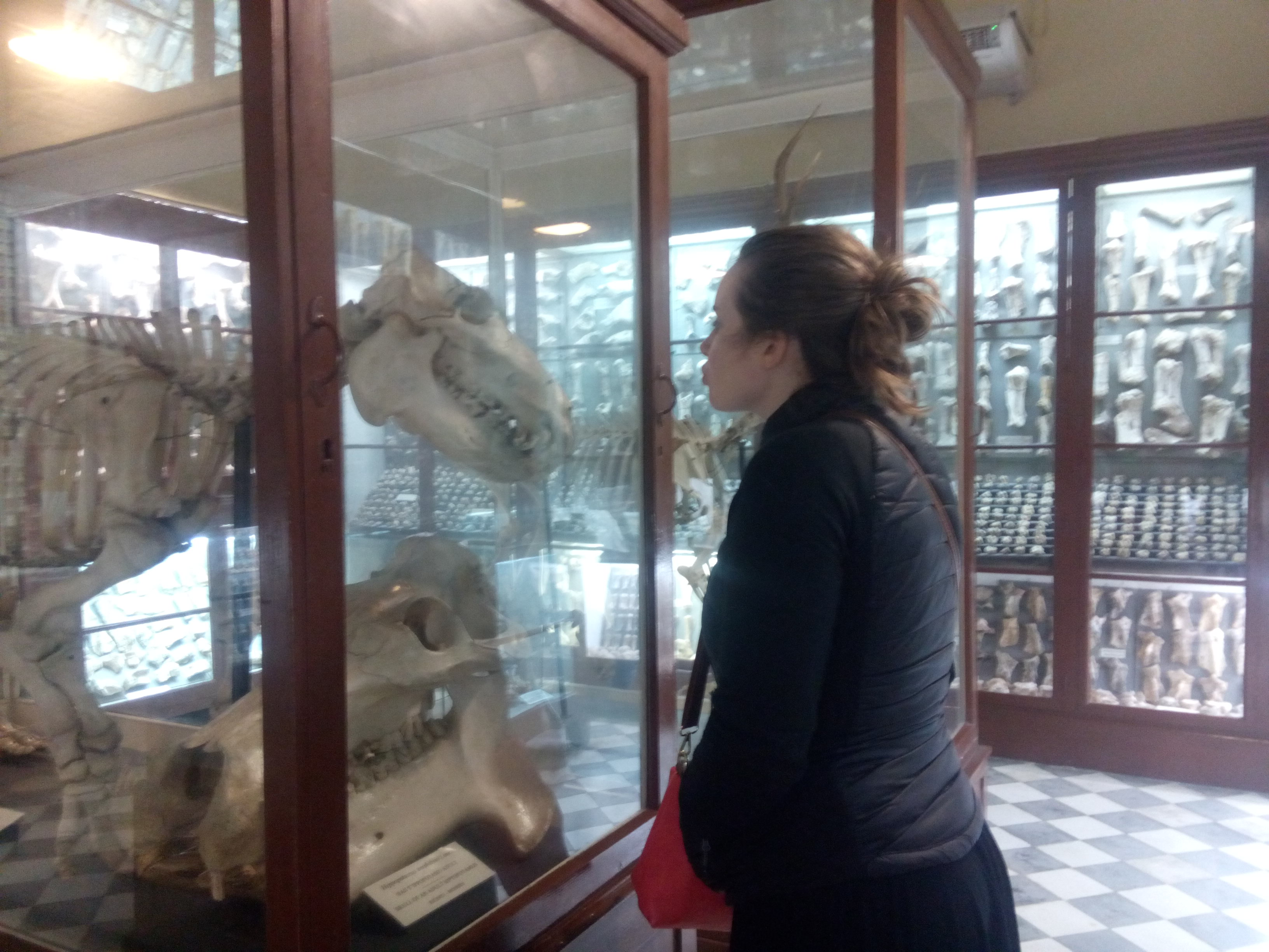 A woman in a black jacket kisses an animal skeleton, behind glass