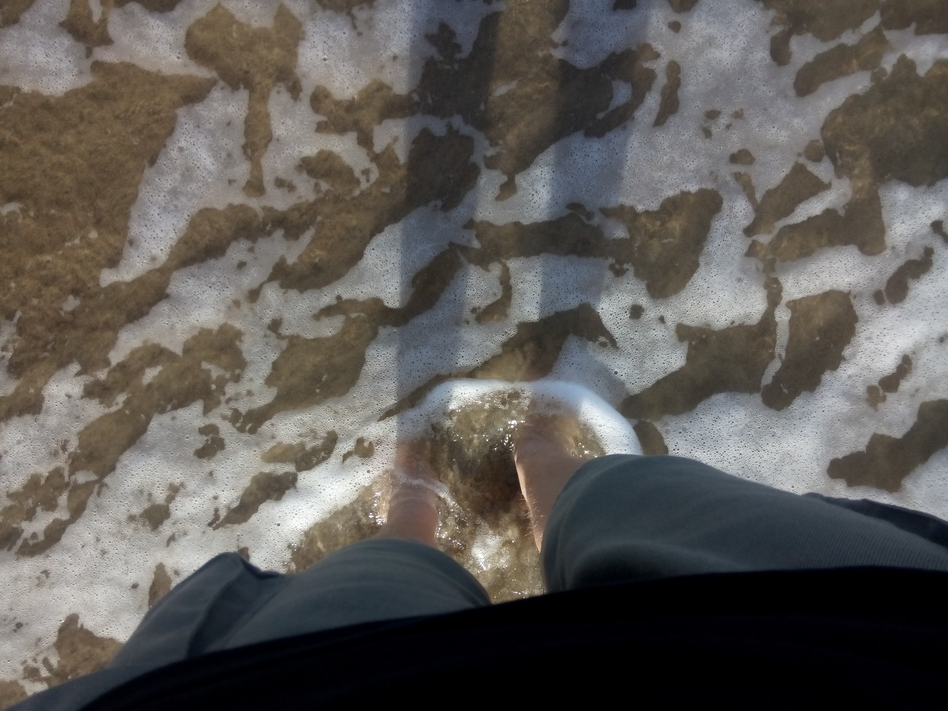 Feet covered in sand and sea, from above
