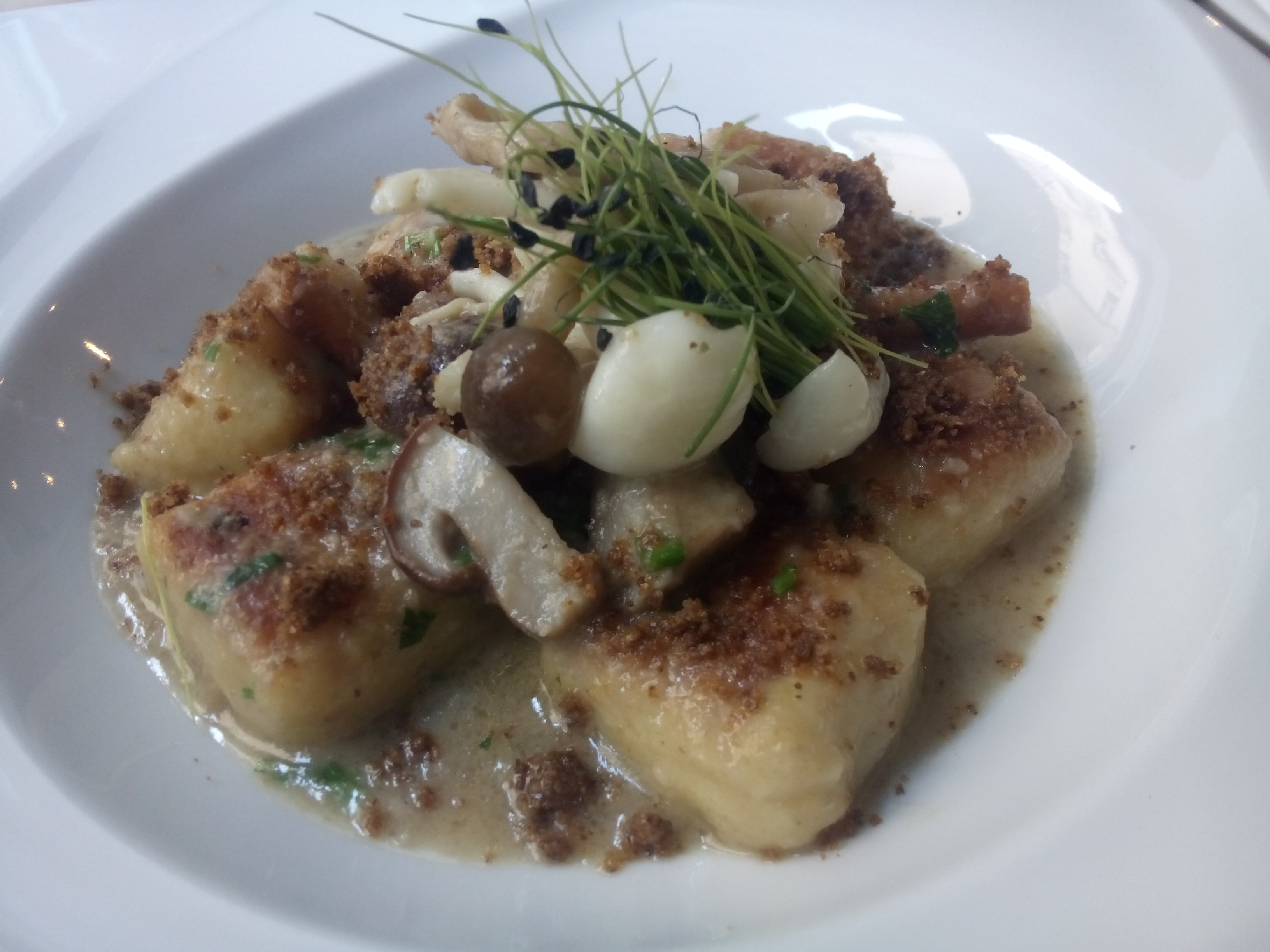 White dish with big squares of gnocchi, and a pile of mushrooms, grassy garnish