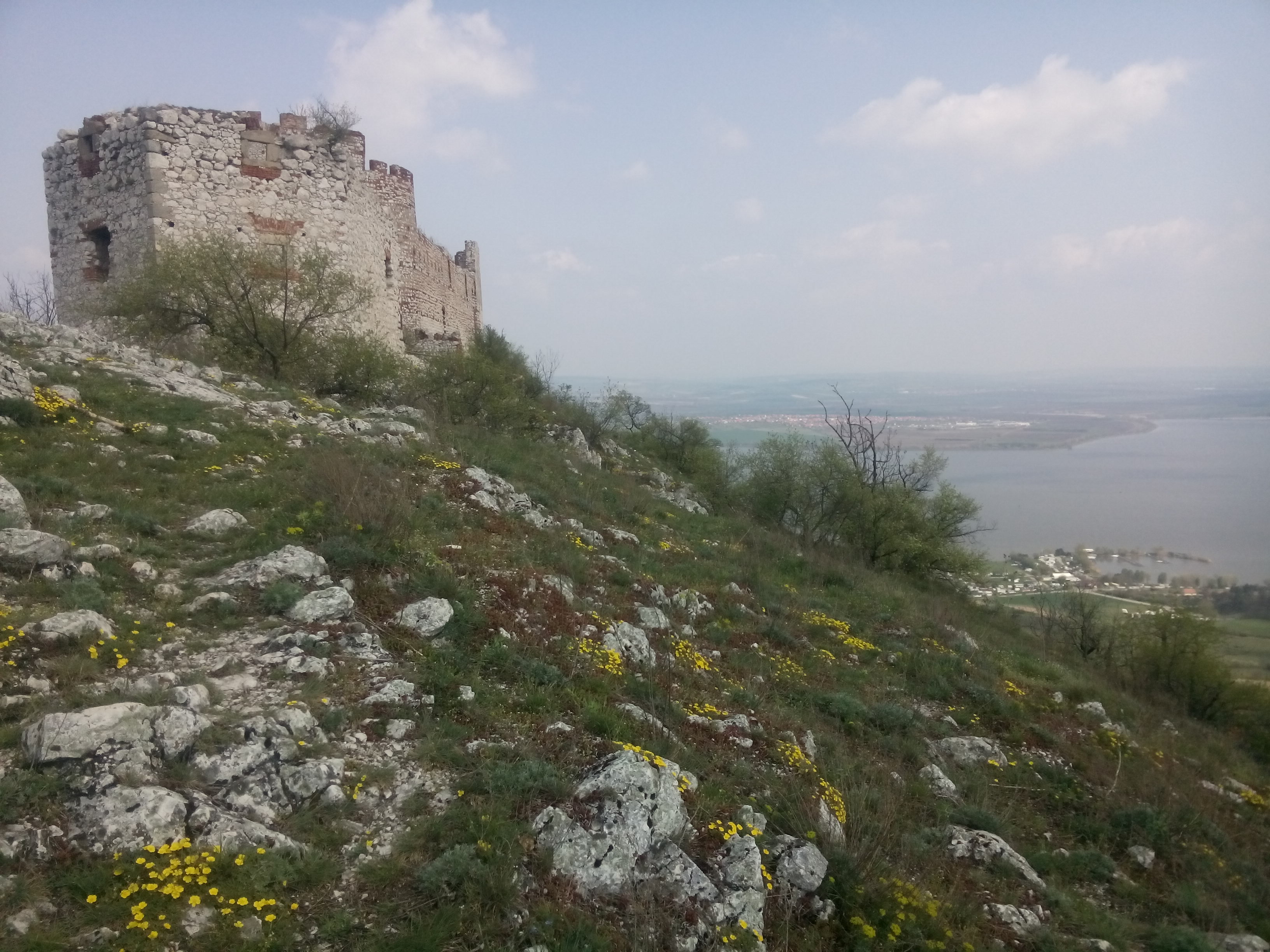 An old castle on a hill covered in rocks and yellow flowers, lake in the distance