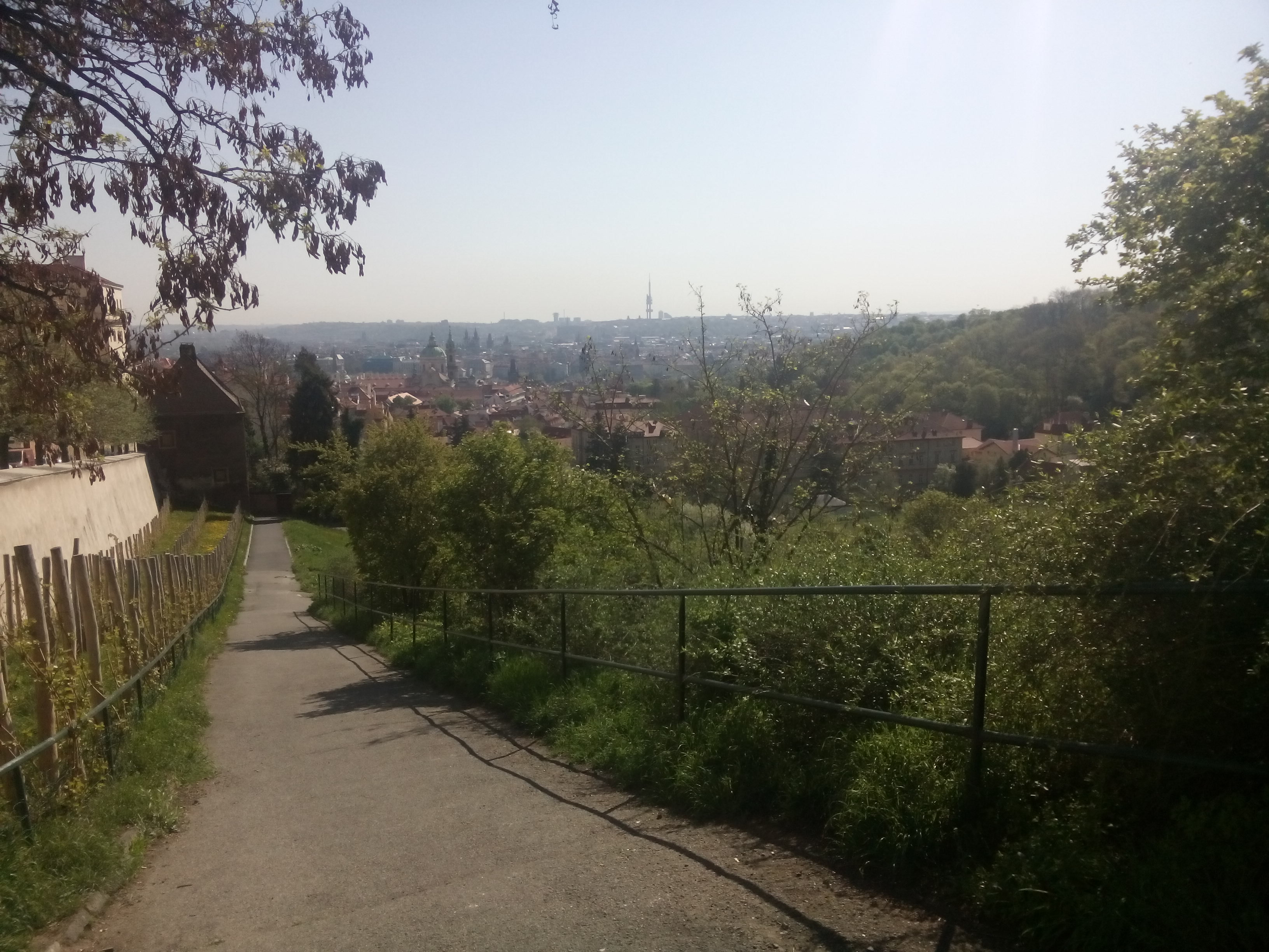A path alongside trees leading to Prague in the distance