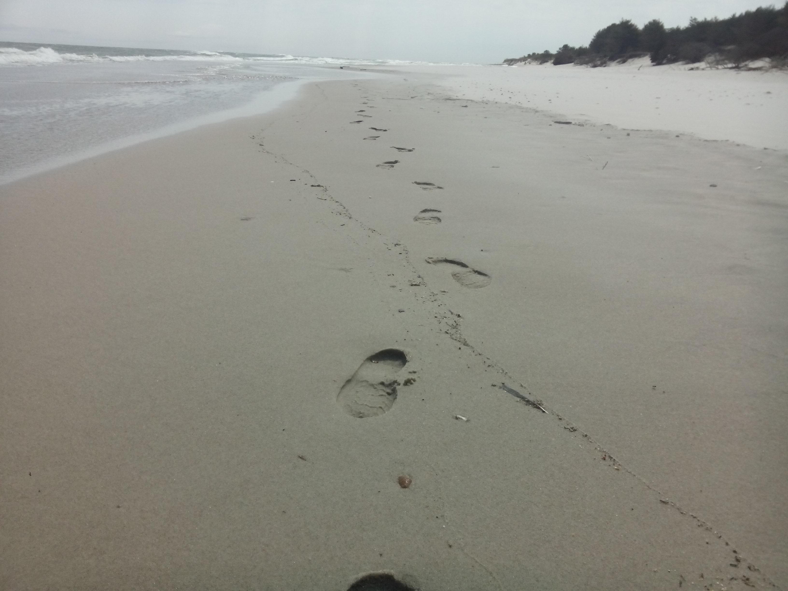 Footprints on a beach leading towards the camera, sea on the left