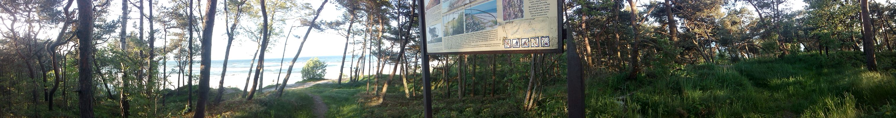 Panorama with trees, sea, grass and a sign in the middle