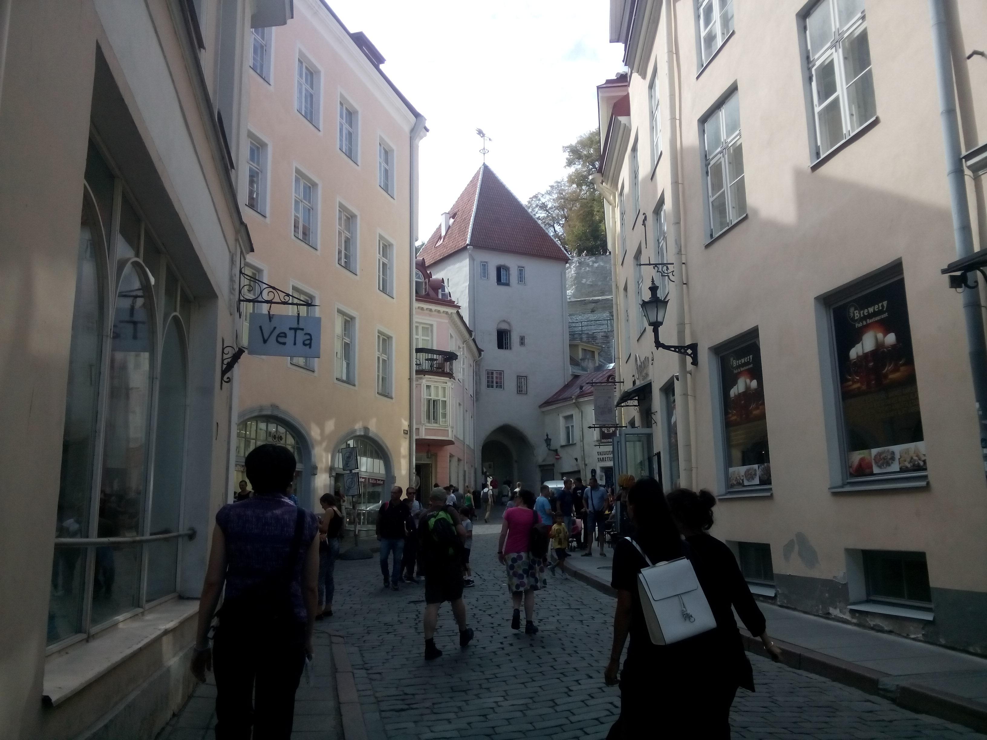 https://i.amy.gy/201808-estonia/IMG_20180811_141215.jpg