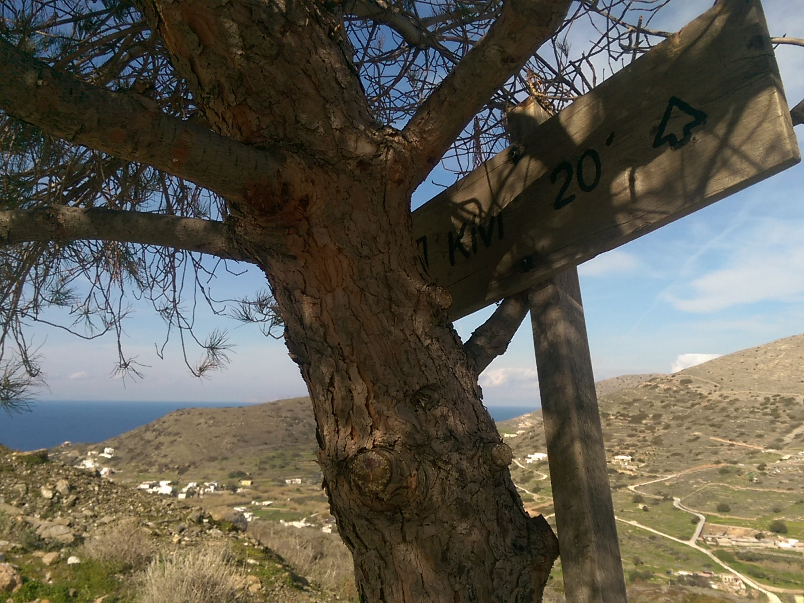 A tree and a wooden sign with an arrow that says Kini 20' in Greek with green hills and sea in the background