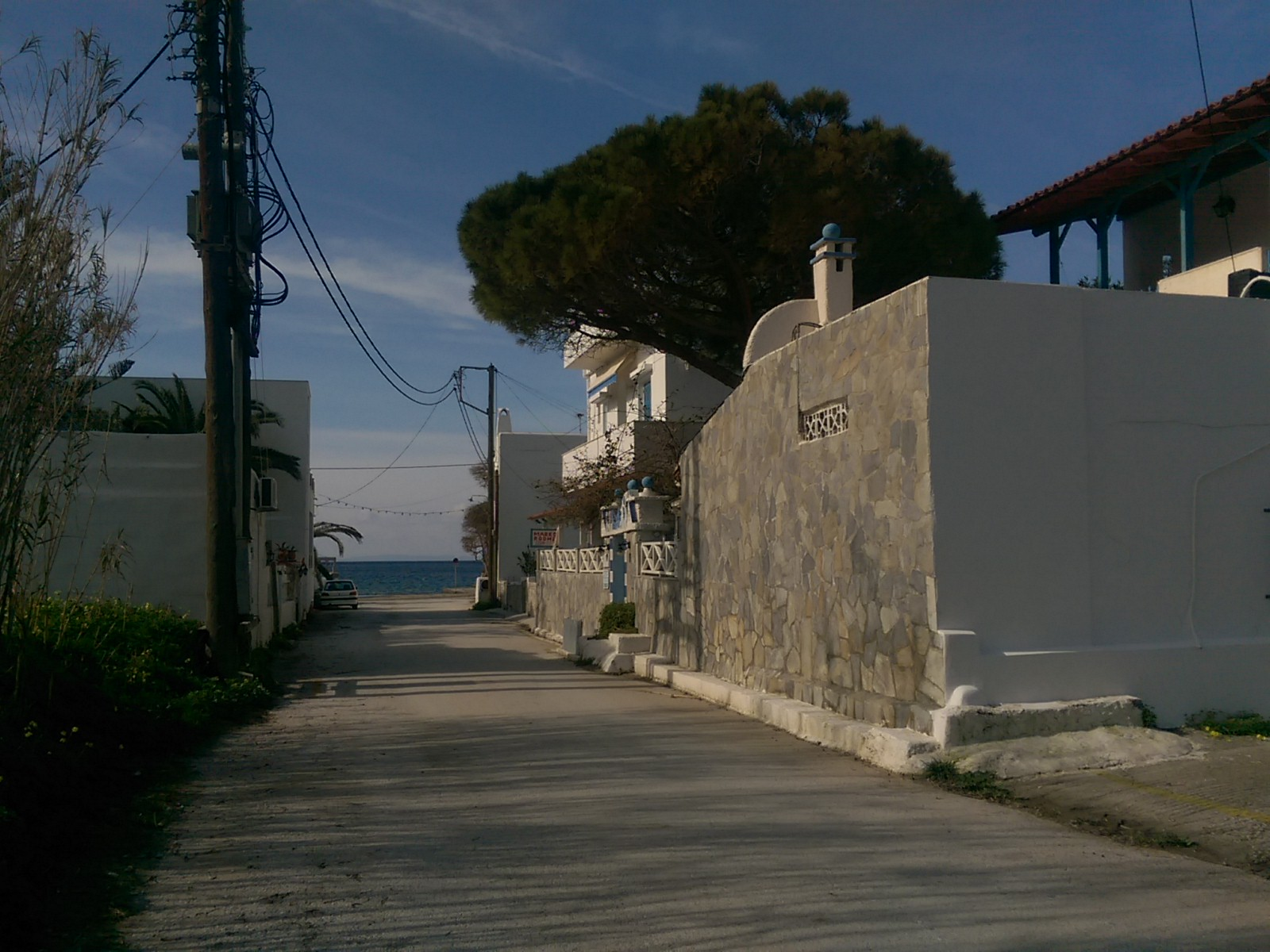 A concrete road leads to the sea with houses and trees on each side