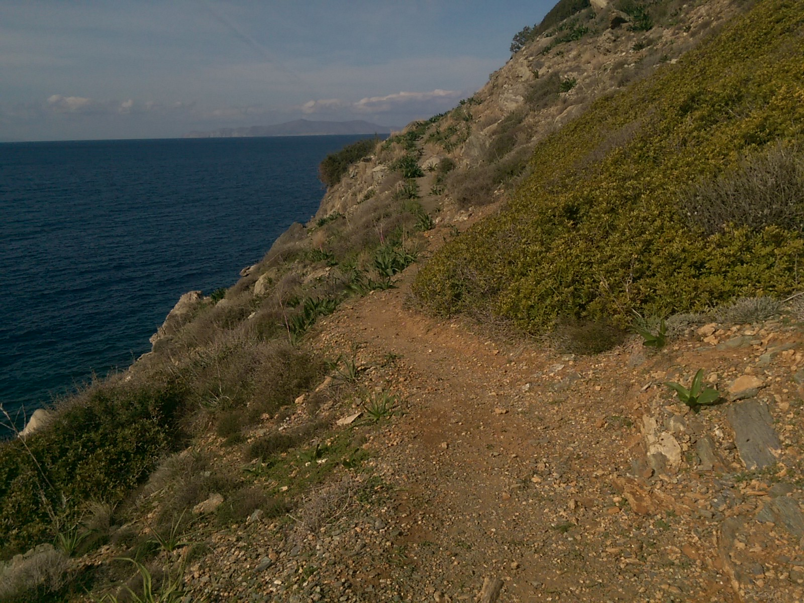 A narrow dirt trail runs along a gorse-covered hill by the sea