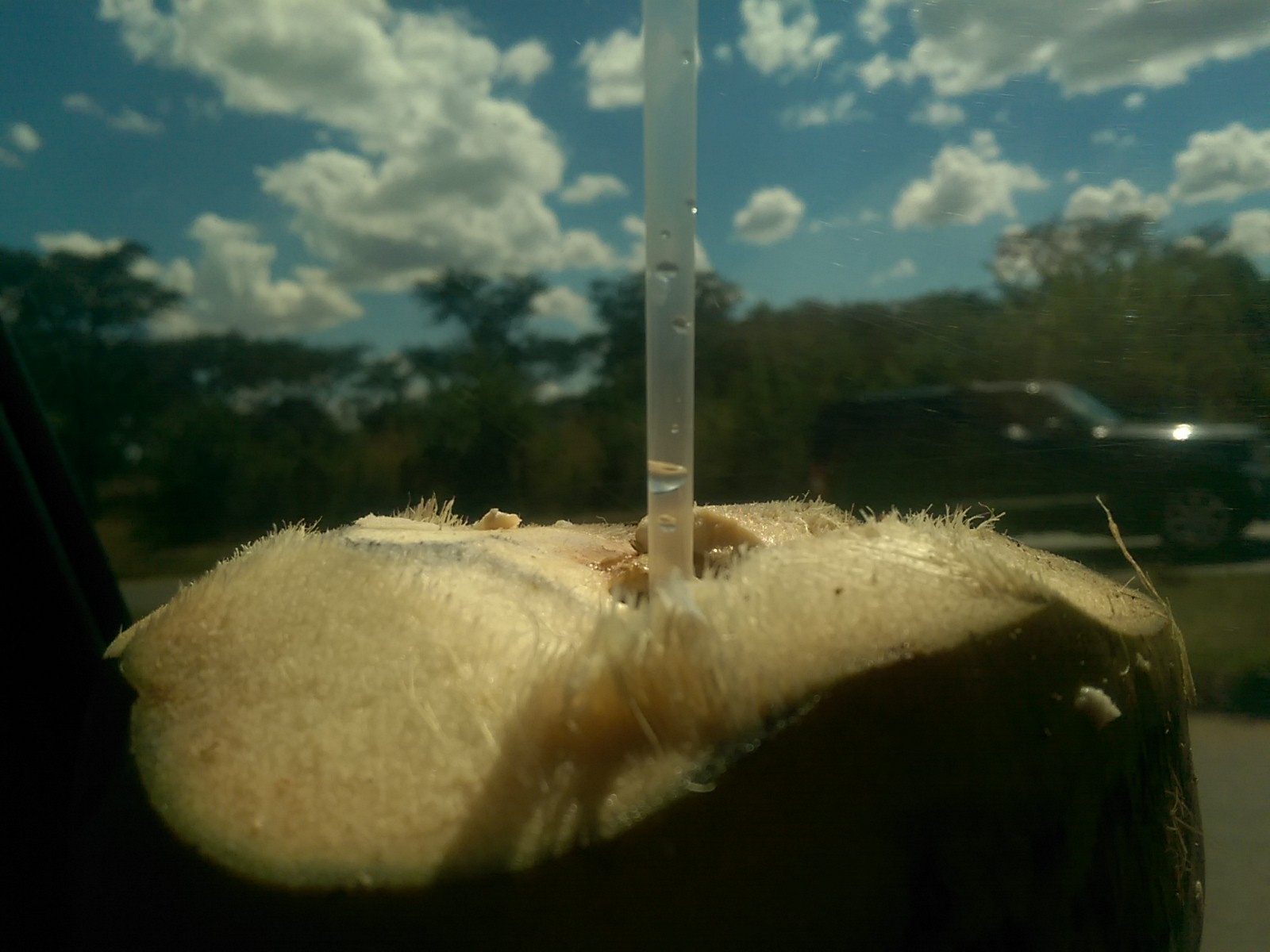 Closeup of a coconut with a straw, against an out of focus blue sky with clouds