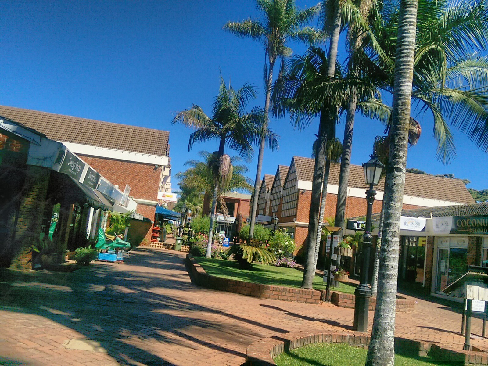 Bright blue skies over tiled walk ways with palm trees and shops