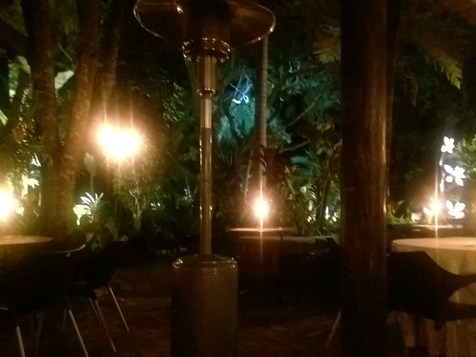 An outdoor restaurant seating area with lots of trees and lights in the dark