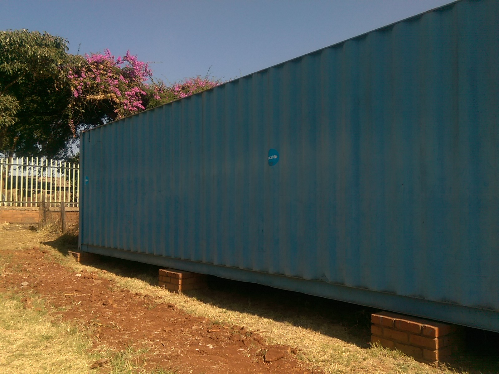 A big blue shipping container on scrubby ground with pink blossom tree in the background