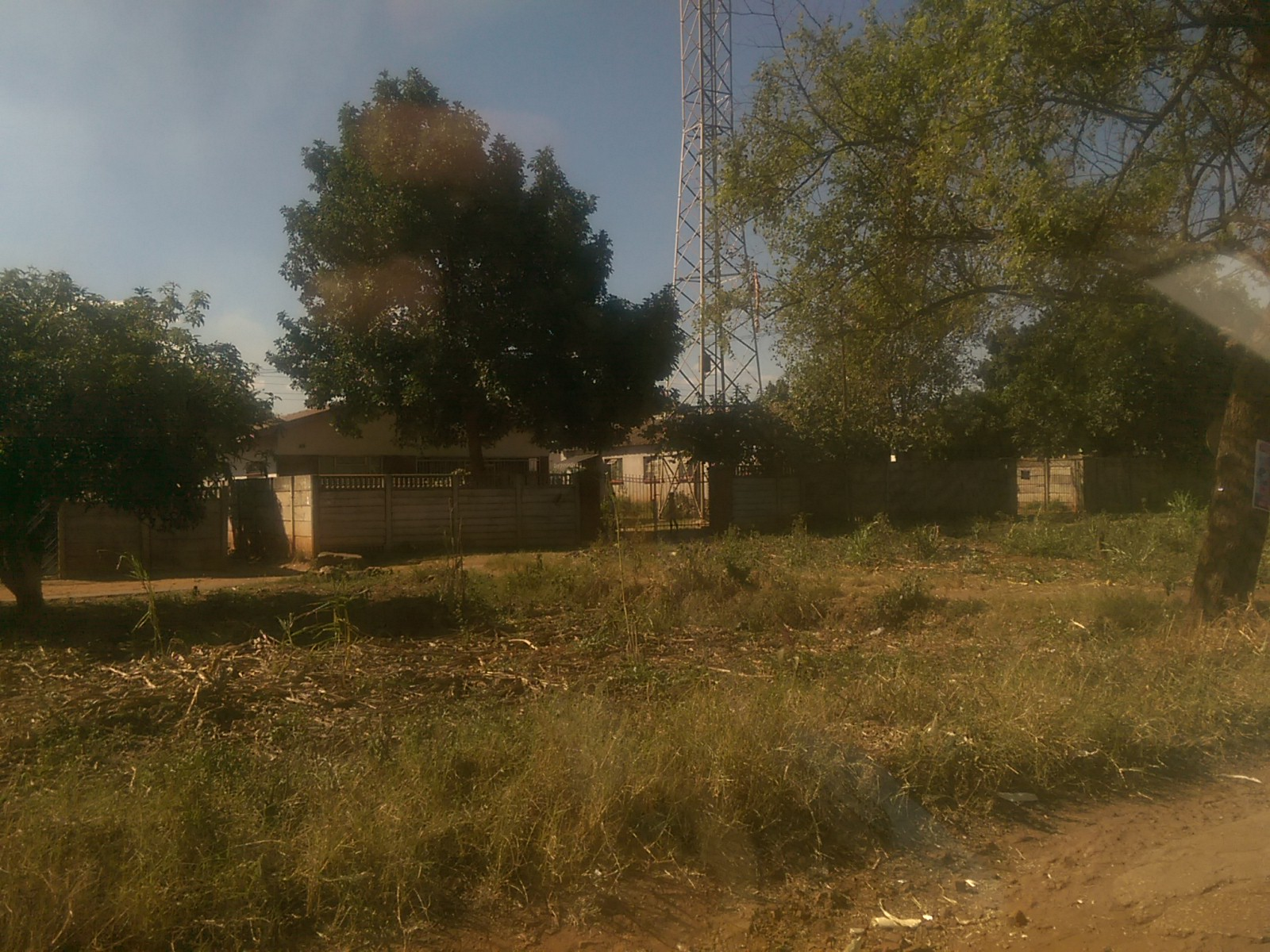 Scrubby grass and trees around small houses at the roadside